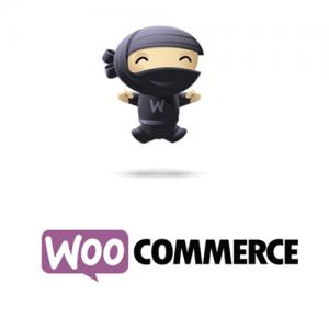 Extension Woocommerce maintenant disponible !